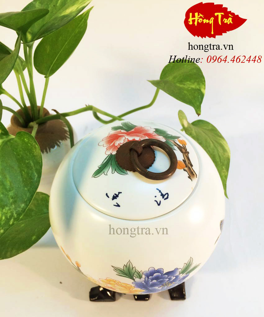 hu-tra-su-hoa-tiet-hoa-mau-don-HTV113