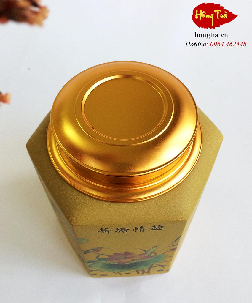 hu-dung-tra-tu-sa-V21-2