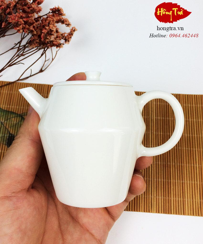 am-su-bach-dinh-V20-3